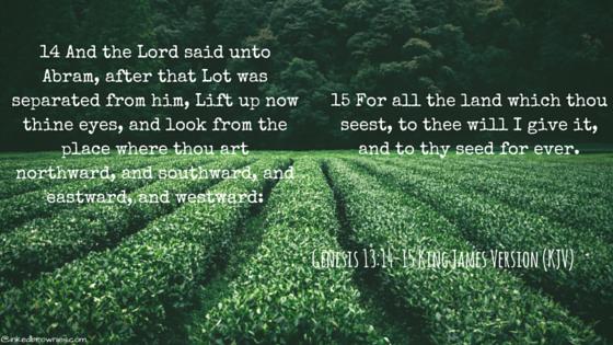 Genesis 7-8-9King James Version (KJV) (3)