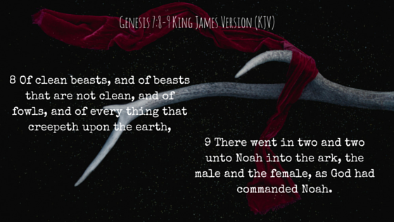 Genesis 7-8-9King James Version (KJV).png